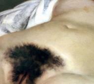 poils - Origine du Monde Courbet