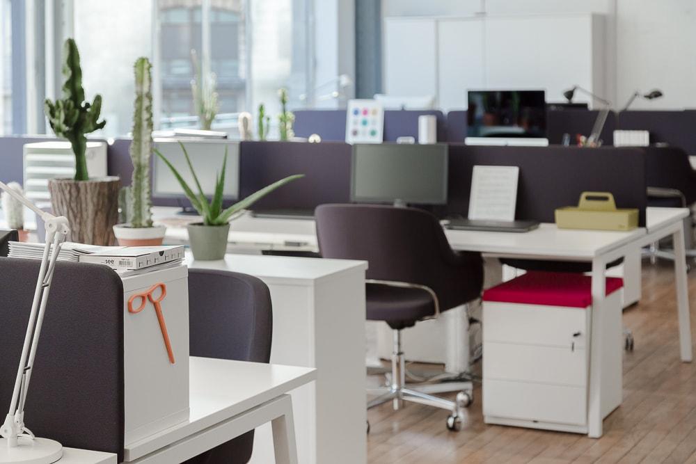 nouveaux-bureaux-bureau-see-concept-see-sup-architecture-design-moore-design-effronté-09
